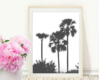 Palm Tree Photo, Art print, Palm Tree print, Minimalist Art, Tropical Print, black and white Photo, Instant download,  Wall Art, Wall  decor