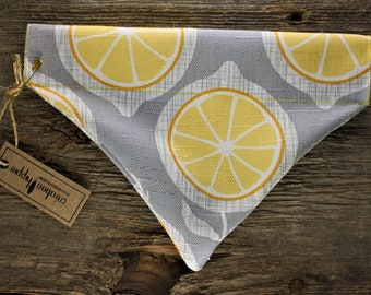 Dog scarf / / lemon