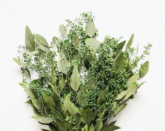 Dried Seeded Eucalyptus, Preserved green eucalyptus, Wedding DIY garland, Eucalyptus wedding decor, eucalyptus bunch dried, silver dollar