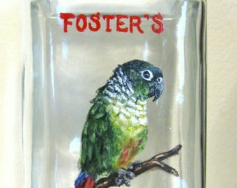 Parrot, Custom Pet Portrait Painting, Conure, Green Bird, Seed Jar, Custom Canister, Painted Pet Portrait, Aviary Art, Bird Seed Jar