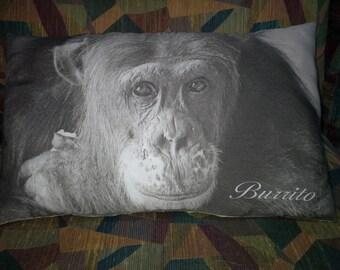 Ape Pillows- Cle Elum 7