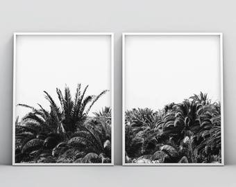 Palm Tree Print, Black and White Palm Trees, Tropical Wall Art, Californian Palm Tree Print, 2 Piece Modern Wall Prints, Instant Download