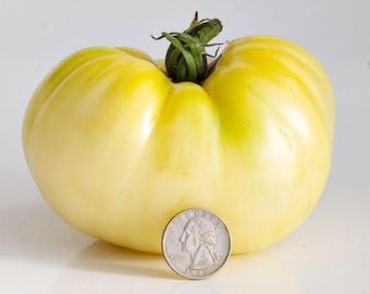 Great White Tomato seeds