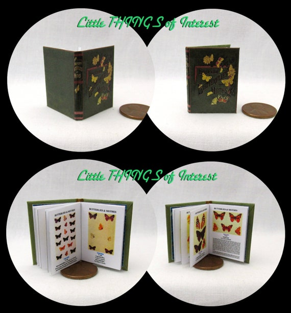 BUTTERFLIES AND MOTHS Illustrated Readable Book 1:6 Scale Book