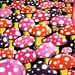 Mushrooms UV Black Light Fluorescent & Glow In The Dark Phosphorescent Psychedelic Psy Goa Trance Art Postcard