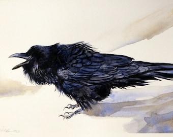 Raven Print raven art prints of raven watercolor raven prints