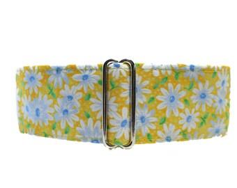 Yellow Martingale Dog Collar, Daisy Martingale Collar, Yellow Dog Collar, Side Release Dog Collar, Daisy Martingale Collar, Greyhound Collar