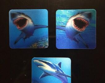 Set of 3 Hologram Magnets Sharks or Dolphins