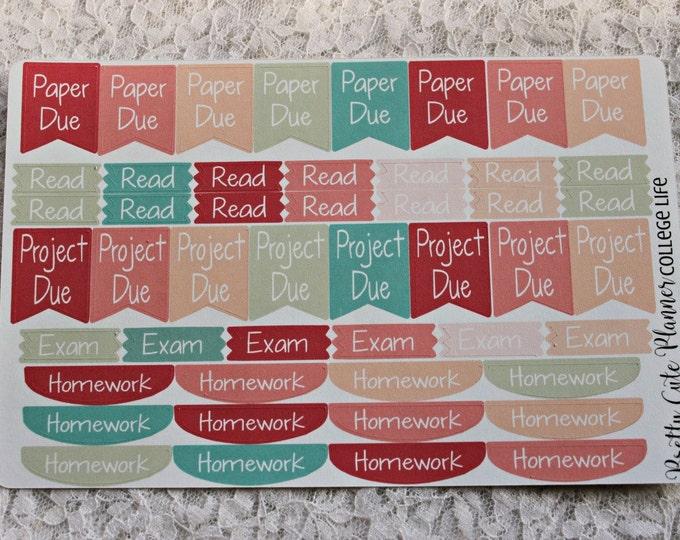 Reminder Stickers / College Life School Stickers / Planner Stickers / Planner Decor / ECLP Stickers / Happy Planner