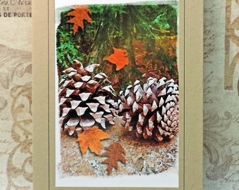 Fall Pinecones Greeting Card, Autumn Leaves Note Card, Blank Inside