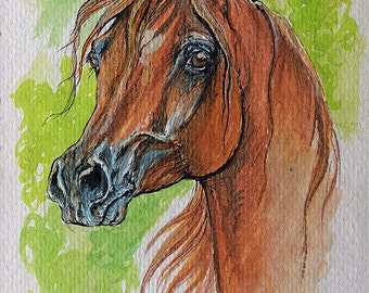 Chestnut arabian horse watercolor painting