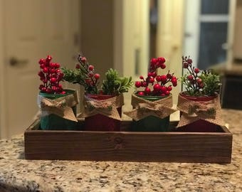 Decorative holiday jelly jar planter tray