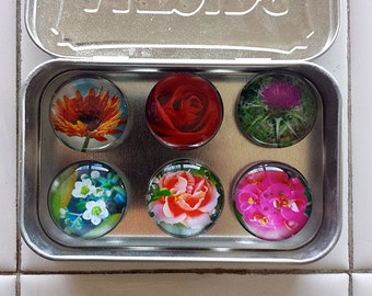 Handmade Glass Marble Magnets - original photographs of Flowers