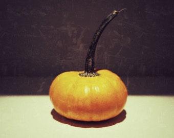 Food Photography, One Fine Pumpkin, Thanksgiving Wall Decor, Pumpkin Art, Still Life Photography