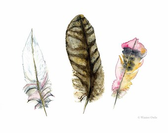 Feathers Watercolour painting, Brown Pink White and Yellow Feather Print, Nature Wall Art, Fine Art Print 8 x 10 or 5 x 7