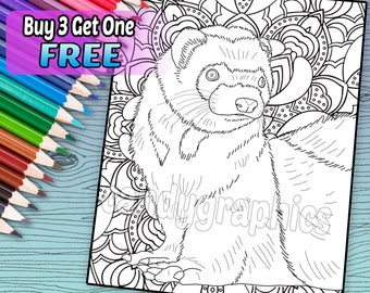 Feisty Ferret - Adult Coloring Book Page - Printable Instant Download
