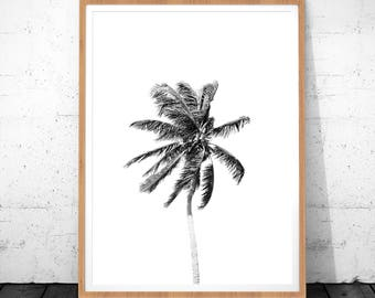 Palm Print, Black and White Palm Decor, Palm Tree Art, Palm Tree Photography, Minimalist Poster, Wall Art Decor, Digital Download Art, Palm