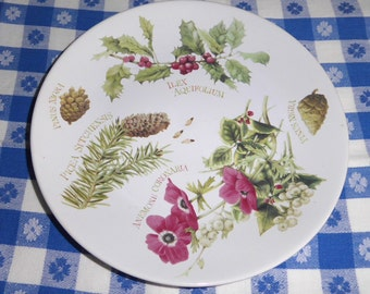 Marjolein Bastin Winter Plate 1995 Porcelain 8.25 Holiday Decor Holly Pine Fir Drawings