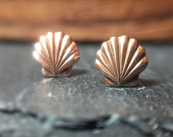 Shell Stud Earrings - Sterling Silver Posts - Dainty Studs - Sea Shells Everyday Jewelry
