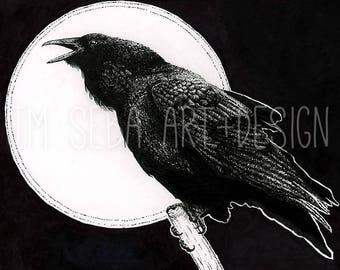 "Raven 8x10"" drawing ORIGINAL ART"