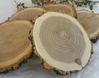 "For Jesse 7"" Set of 5 Elm Slices ~ 5 Wood Slices ~ Wood Slabs ~ Rustic Wedding Decor ~ Summer Wedding ~ Fall Wedding ~ Rustic Wood Slices"