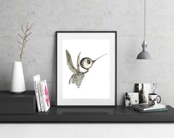 Hummingbird Skeleton Illustration