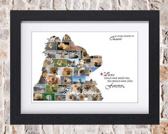 Pomerainian Profile Dog Puppy Pet Memorial Digital Photo Collage Wall Art Fine Art Print