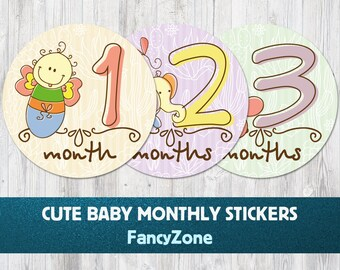 Baby Monthly Milestone Stickers, Baby Month Stickers Toys, Month to Month Stickers, Baby Shower Gift, Growth Decals, Baby Shirt Stickers