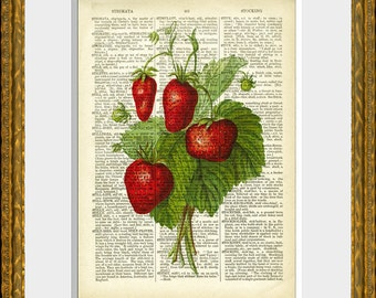 STRAWBERRIES recycled book page art print - an antique dictionary page with a retooled antique fruit illustration - upcycled kitchen vintage