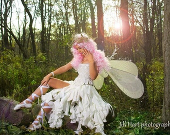 Hand Beaded Fairy Corset Costume