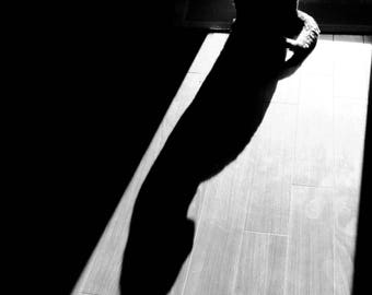 Cat kitty kitten shadow shadows silhouette black and white photo photography