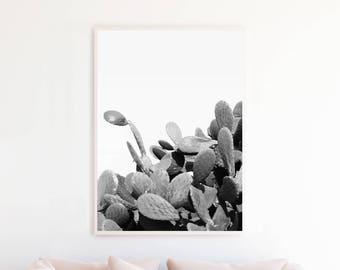 Black and White Cactus Photography Printable, Cactus Wall Art Download, Modern Boho Minimalist Decor, Southwestern Desert Art Poster, c2c2bw