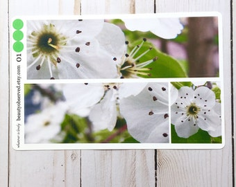 pear blossom planner stickers | white pear blossom photo stickers | full box planner stickers |  | vinyl matte stickers | spring flowers
