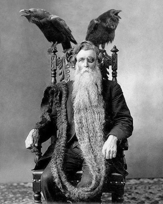 Bearded odin man long longest beard unusual vintage
