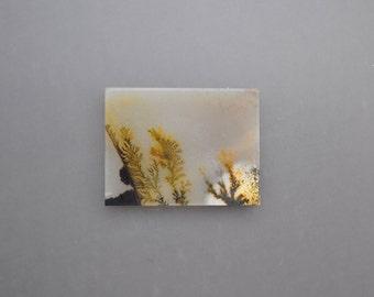 Dendritic Agate Cabochon - North Sea