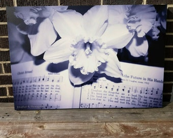 Black and White Canvas of a Daffodil on a Hymn
