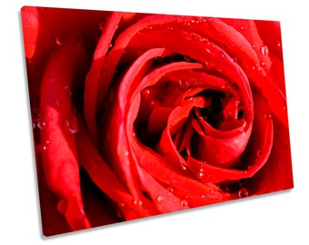 Red Rose Flower Floral CANVAS WALL ART Framed Print Picture