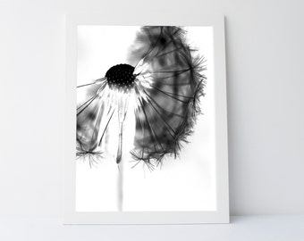 Dandelion Print, Dandelion Art, Dandelion Photo, Black White Wall Art, Dandelion, Black and White, Printable art, Wall Art Printable