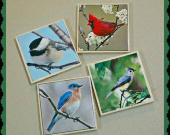 Bird Coasters - Bird Lover Gifts - Nature Gifts - Cardinal bird - Chickadee - Bluebird - Titmouse - Bird Gifts - Tile Coasters - Wild Birds