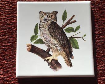 Vintage Hyalyn Owl Tile-Trivet- Wall Decor