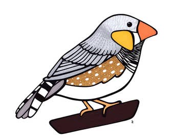 Zebra Finch - Bird - Animal Print - Nursery - Wall Decor - Gift - Nature Art - Illustration - House Warming - Home Decor
