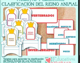 Tarjetas Clasificación del Reino Animal -español-