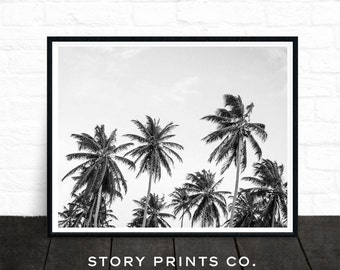 Palm Print, Black and White Photo, Palm Tree Art, Tree Photography, Summer Decor, California Print, Landscape, Digital Download, Printable