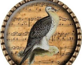 Bronze pendant Cabochon - bird song (760)