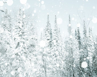 Wedding photography, snow, white wedding, winter, snowflakes, bride, forest photography steel blue silver Canadian falling snow