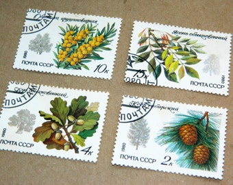 Soviet Vintage Postal Stamps Forest stamps Floral Botanical postage stamp Collectibles USSR Russia Soviet Union Russian souvenir SET of 4