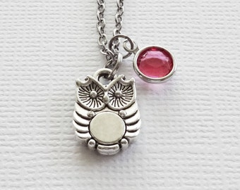 Owl Necklace, Tiny Baby Owl, Cute Owl Charm, Child Girl Boy Gift, Friend Birthday Gift, Silver Jewelry, Swarovski Channel Birthstone Crystal
