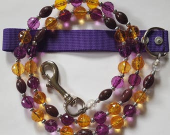 Purple/Gold with footballs for any pet.