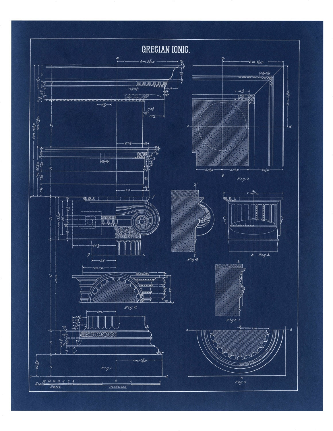 Blueprint wall decor greek ionic column drawing architecture zoom malvernweather Image collections