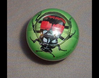Club Earth 1992 Burying Beetle Toy